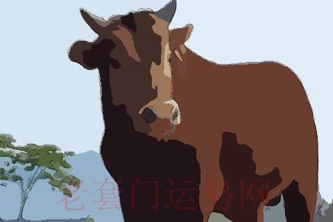 2009年生肖牛2021年运势怎么样,生肖牛2021年运程及运势是如何的
